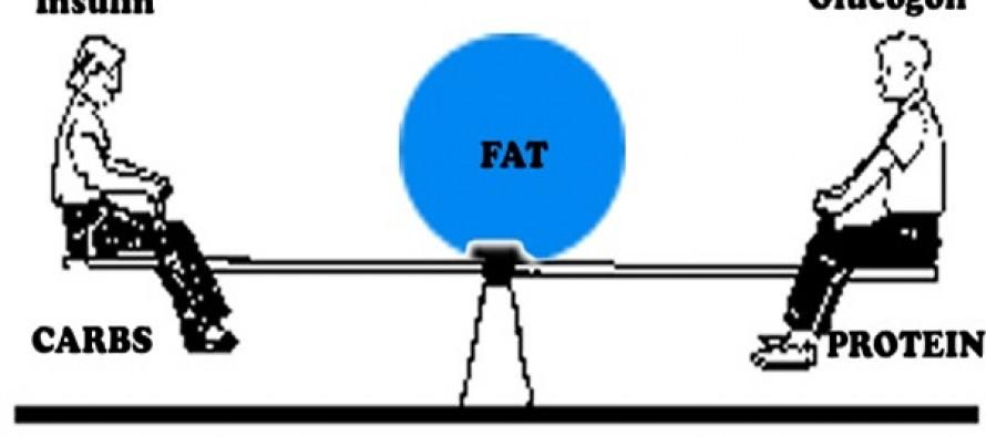 """Hvordan påvirker feil bruk av """"raske"""" karbohydrater kroppen vår?"""