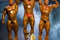 NM i BB & Fitness 2007