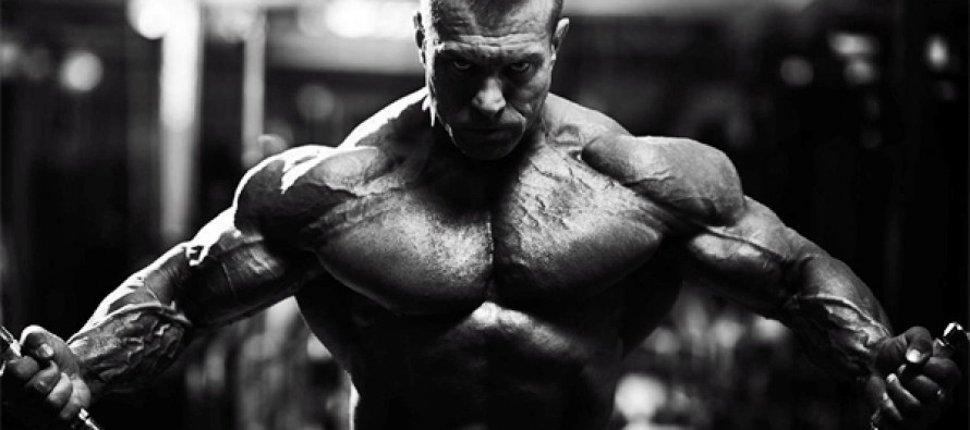 10 tips for større muskler!