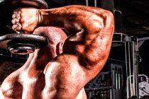 Bygg Triceps