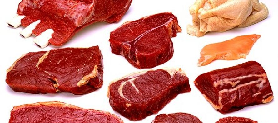 Kjøtt eller Proteinpulver?