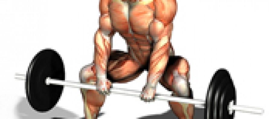 Essensielle prinsipper for styrke og muskelvekst – Del 3 – strekk refleks