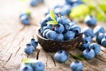 Frie radikaler og antioksidanter