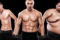 Leptin – nøkkelen til fedme og overvekt?