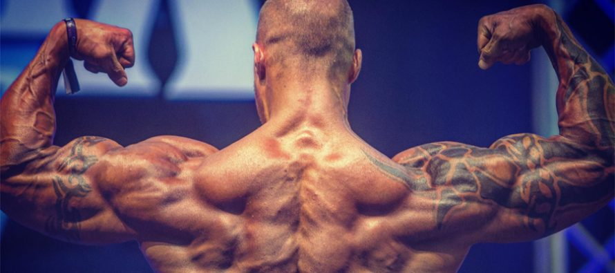 WEB-TV: På trening med NPC classic physique athlete Marius Osmundsen