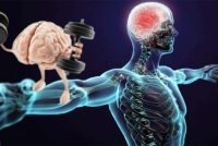 MUSKELHUKOMMELSE: Musklene husker størrelsen sin