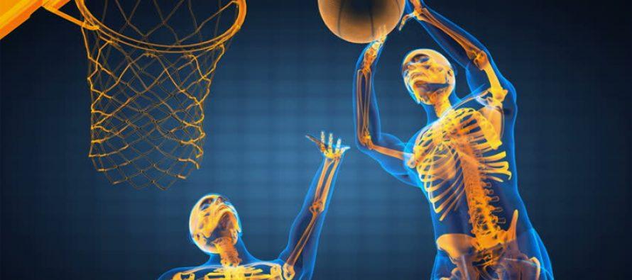 Nervesystemet og trening (del 2)