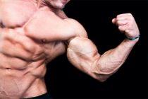 Fører styrketrening til utmattelse til maksimale muskeløkninger?