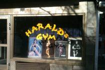 Gymguiden: Harald´s. Et gym med ekte lidenskap